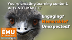 The EMU Experience, LLC